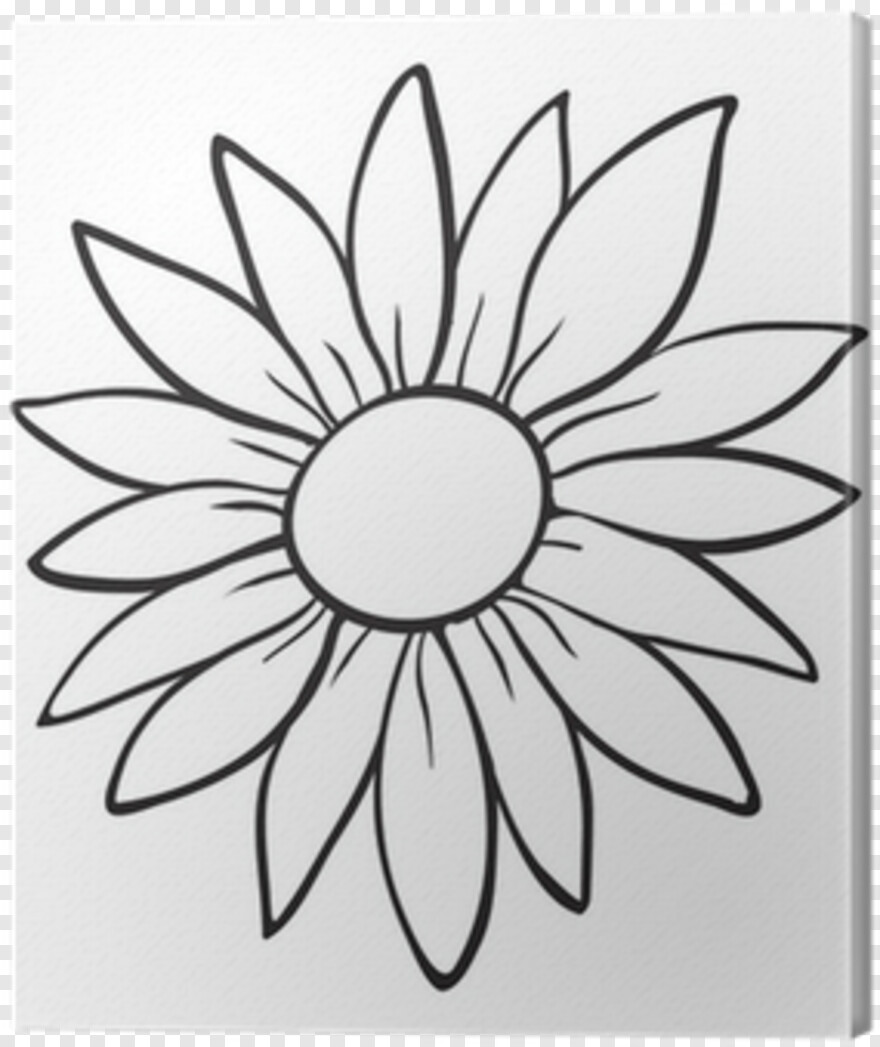 Flower Sketch Cartoon Drawings Of Flowers Png Download 400x400 2415163 Png Image Pngjoy