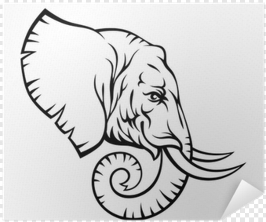 Elephant Head Easy Elephant Head Drawing Png Download 400x400 2976881 Png Image Pngjoy