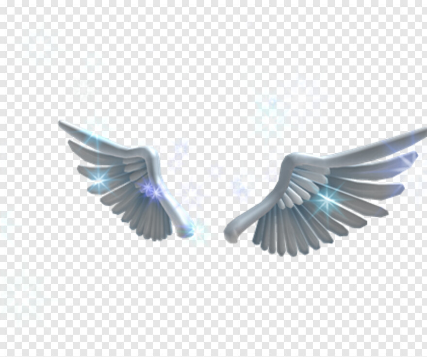 Dove Roblox Angel Wings Roblox Angel Wings Code Png Download 420x420 641626 Png Image Pngjoy