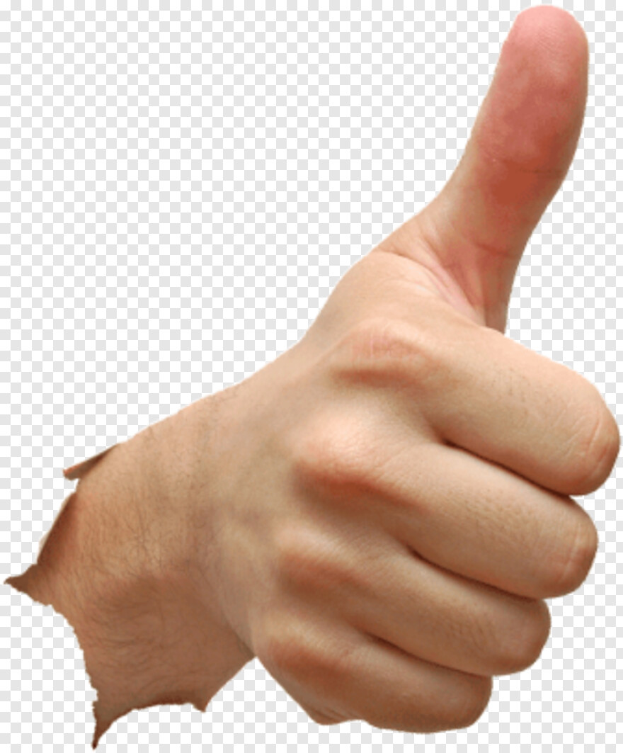Thumbs Up And Down Thumb Up Hand Png Download 486x595 5437089 Png Image Pngjoy Thumbs up and thumbs down logos, thumb signal like button icon, thumbs down s, hand, logo png. thumbs up and down thumb up hand png