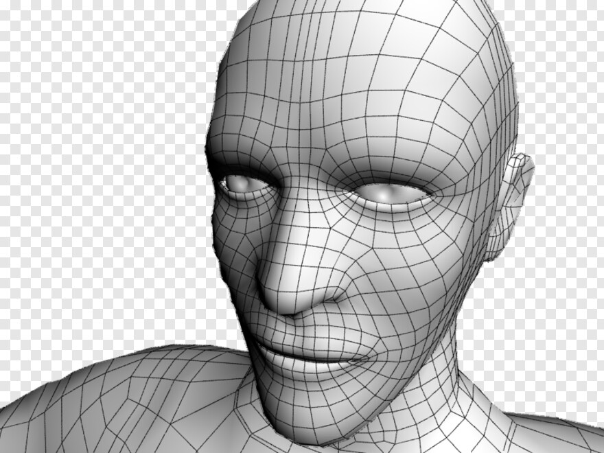Human Face Low Poly 3d Face Wireframe Hd Png Download 800x600 6988260 Png Image Pngjoy