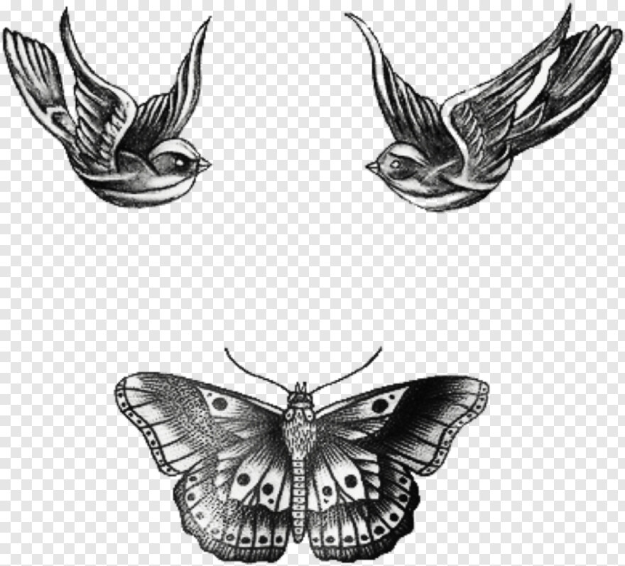 Harry Styles Harry Styles Swallows Tattoo Transparent Png 1024x1024 1345033 Png Image Pngjoy Rose tattoo png transparent images png only. harry styles swallows tattoo