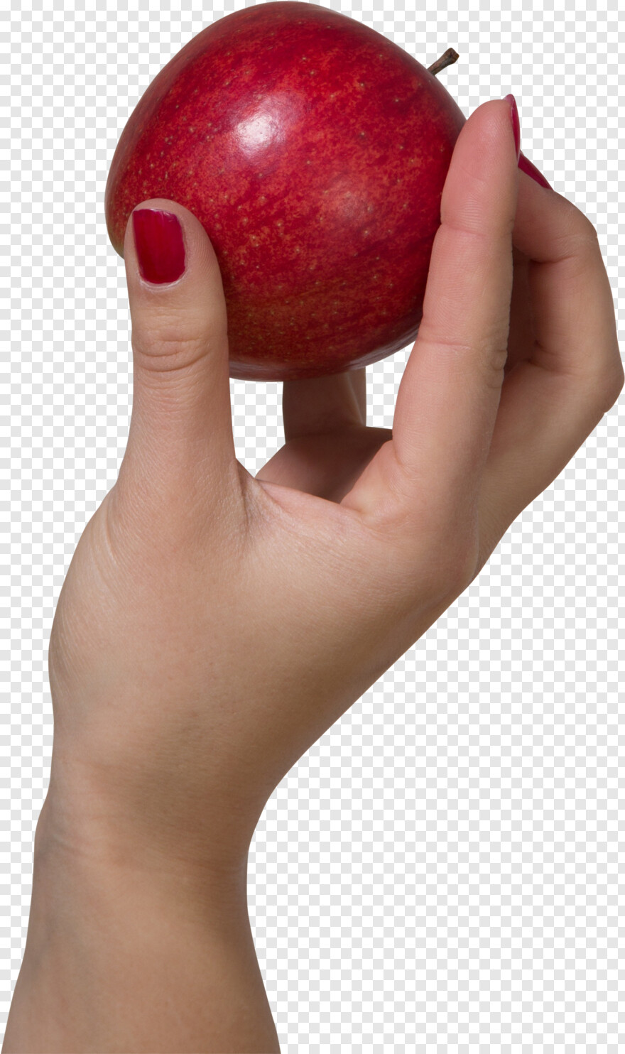Hand Holding Something A Hand Holding A Red Apple Png Image Hd Png Download 2055x3082 9055429 Png Image Pngjoy Discover and download free hand holding png images on pngitem. red apple png image hd png download