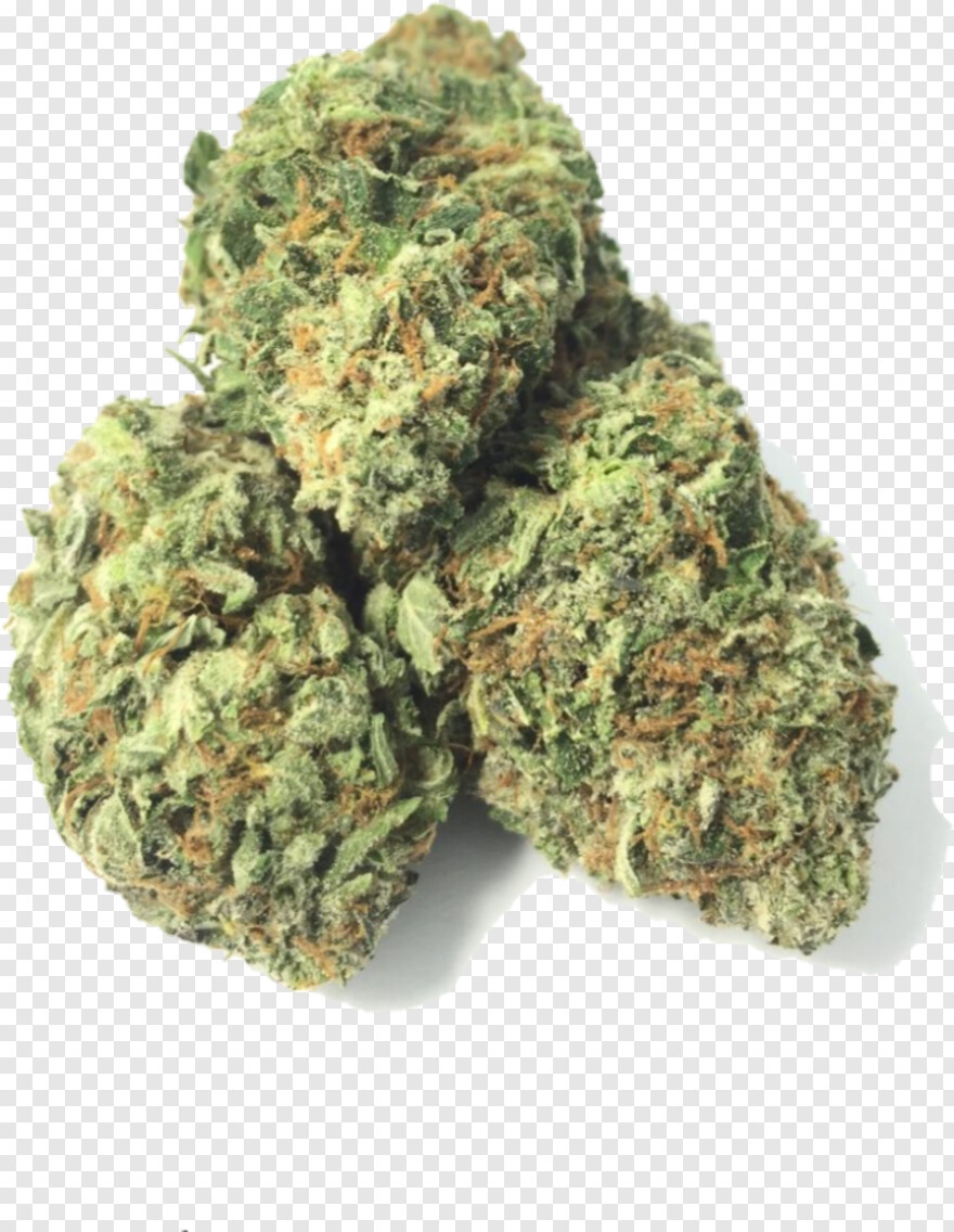 Weed Nugget Muthia Hd Png Download 699x902 10235825 Png Image Pngjoy
