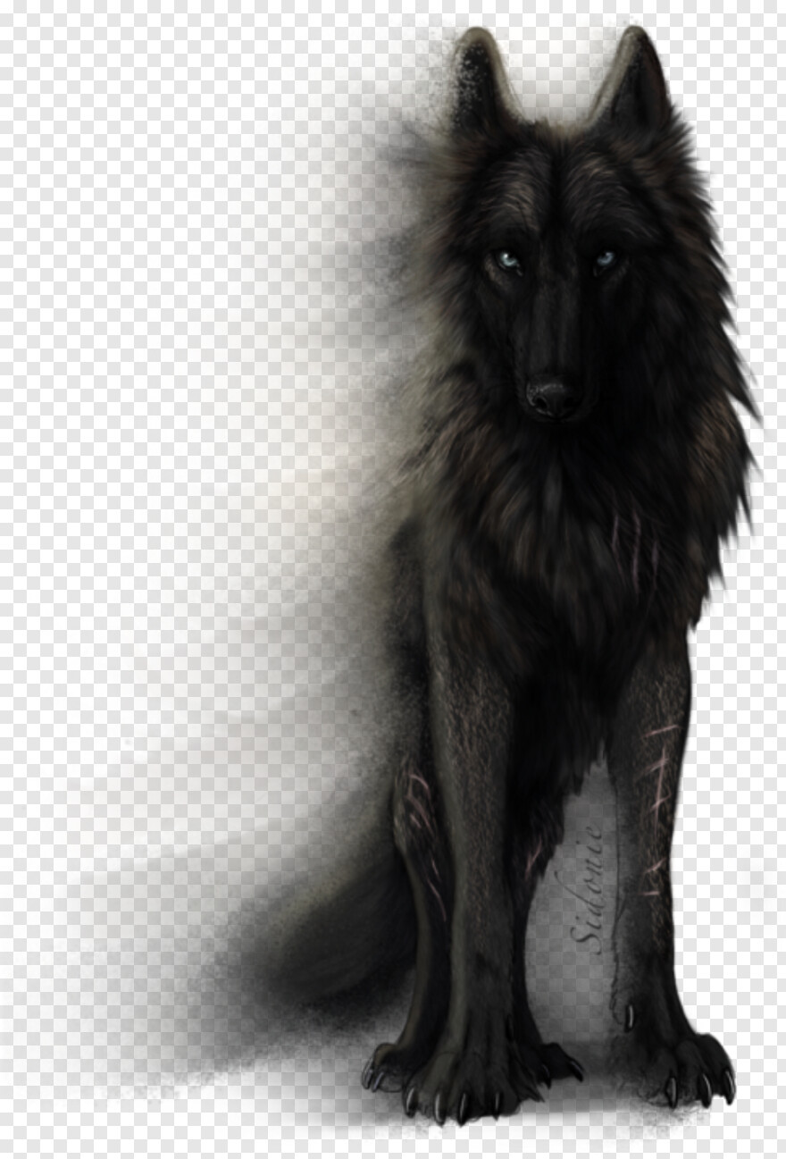 [Image: 10476007_black-wolf-anime-wolf-drawing-t...nt-png.png]