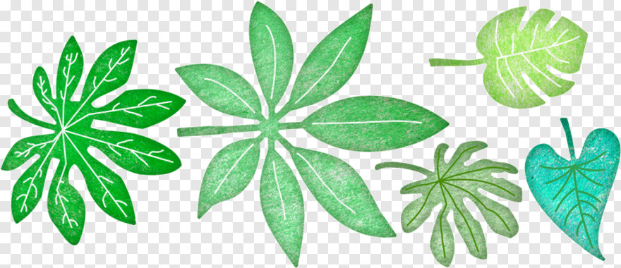 Tropical Leaves Die Tropical Leaves Transparent Png 1000x1000 1910233 Png Image Pngjoy How to decorate with modern and tropical statement leaves. pngjoy