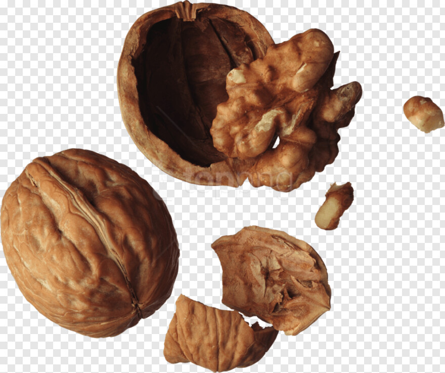 Walnuts - , Transparent Png