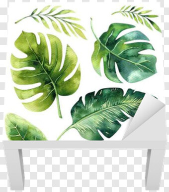Jungle Leaves Png Images For Download With Transparency Urban jungle palm prints are hot right now for interiors and home decor. jungle leaves png images for download